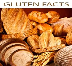 Gluten Facts